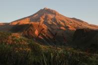 New Zealand 2014_1136m7