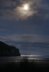 Okains Bay by moonlight